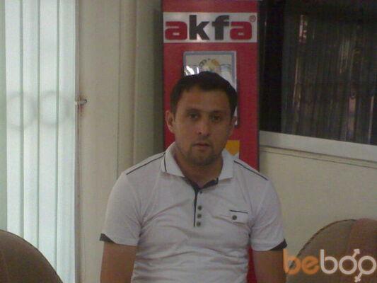 ���� ������� muzaffarakfa, �������, ����������, 35