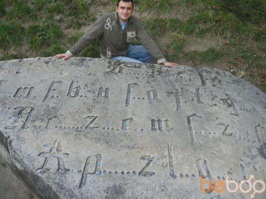 ���� ������� vario, �����, �������, 29