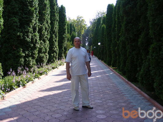 ���� ������� sergo, ���������, �������, 53
