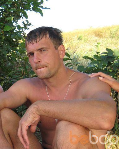 ���� ������� vitechek, ����, ������, 33