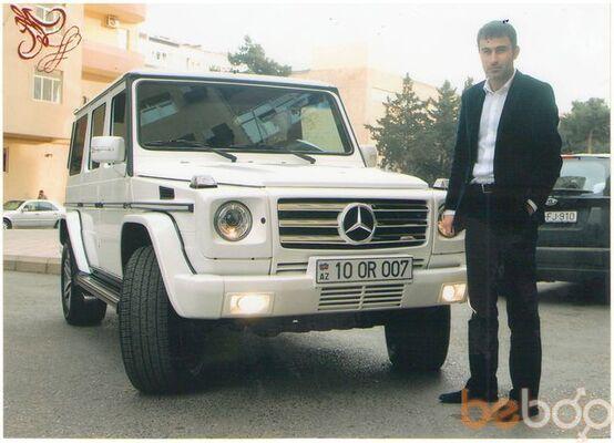 ���� ������� mamedov, ����, �����������, 36