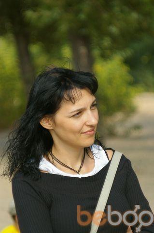 ���� ������� Koshka, ����, �������, 37
