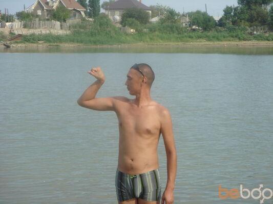 ���� ������� tofik, ������, ���������, 40