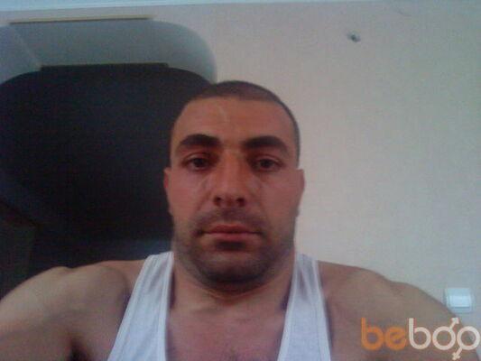 ���� ������� gulshadyan, ������, �������, 37