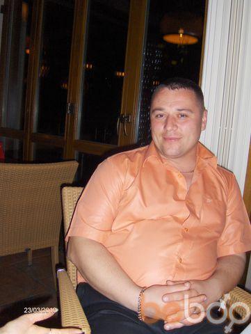 ���� ������� alexandru, �������, �������, 36