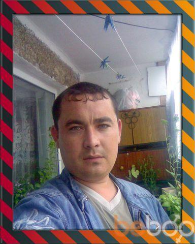 ���� ������� Djet Li, �������-���������, ������, 34
